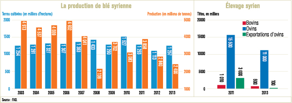 agriculture-syrie-643